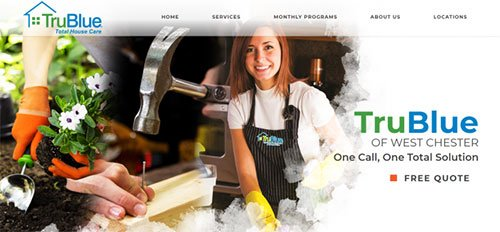 TruBlue Franchise Website Screenshot